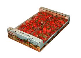 erdbeeren_5kg