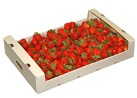 erdbeeren_5kg_2
